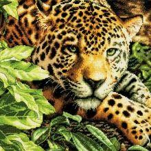 Animals (282)
