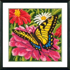 Butterfly And Zinnias
