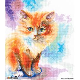 Sunny kitten