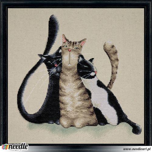 Kitty Trio