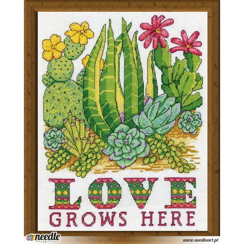 Cactus Love