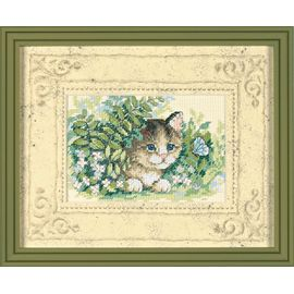 Kitten and Butterfly - Passe-Partout