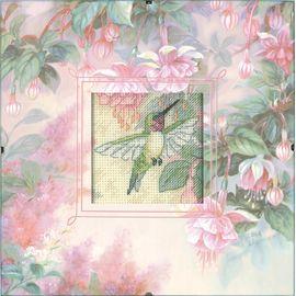 Hummingbird Grace - Daydreams