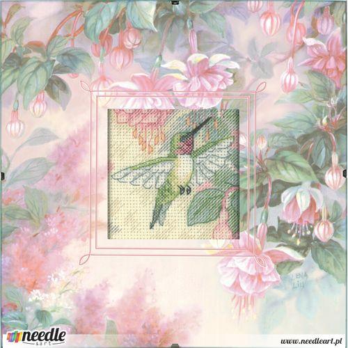 Wdzięk Kolibra - Daydreams