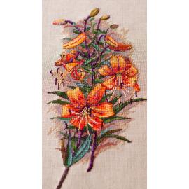 Vintage Lilies (Belfast)