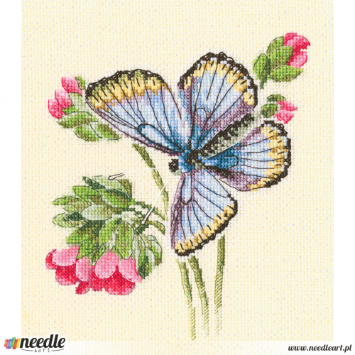 Butterfly on the dainty flower
