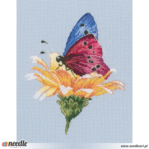 Butterfly on the flower 2