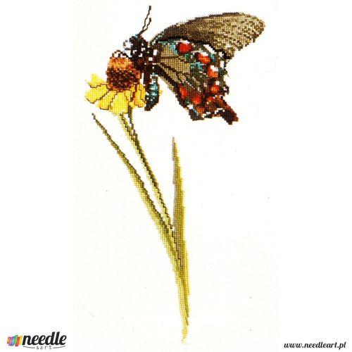 Butterfly - Kit no. 1